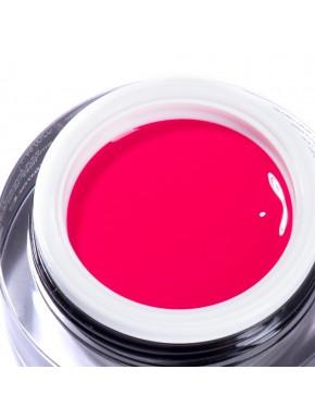 Gel Color Artistic - N. 10