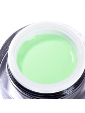 Gel Color Artistic - N. 12